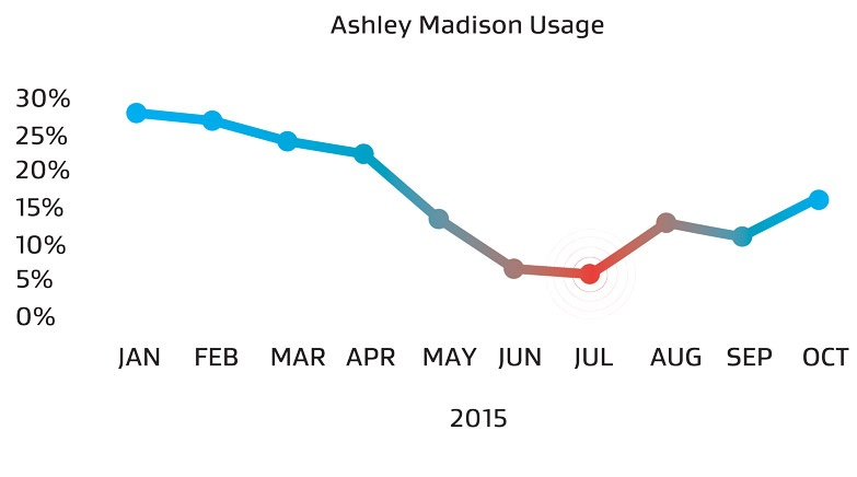 Ashley Madison usage